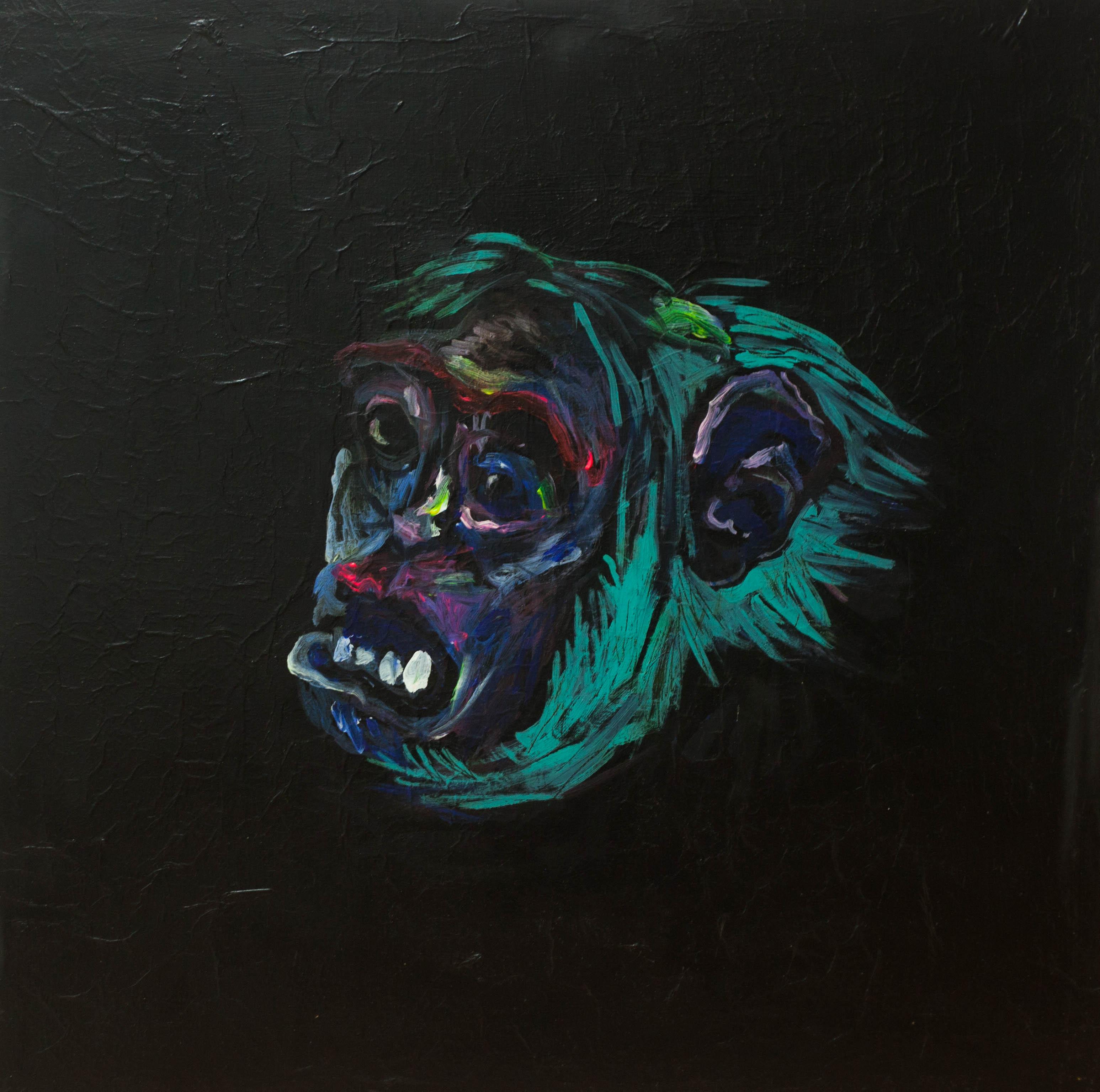 madiba gorille